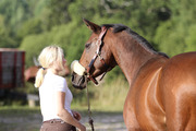 Linn is a positive an energetic horseperson from Helsinki. She has a long experience among horses and she teaches both children and adults. Her specialskills are children, education and specialeducation. Linn teaches in Swedish, Finnish and English. Her passion is jumping.